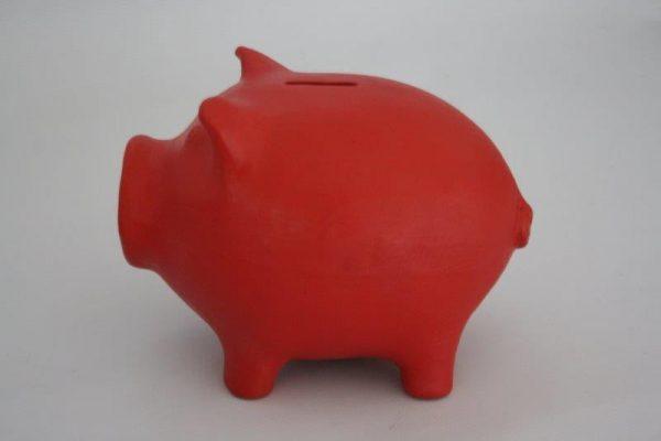 Pig Shape Piggy Bank